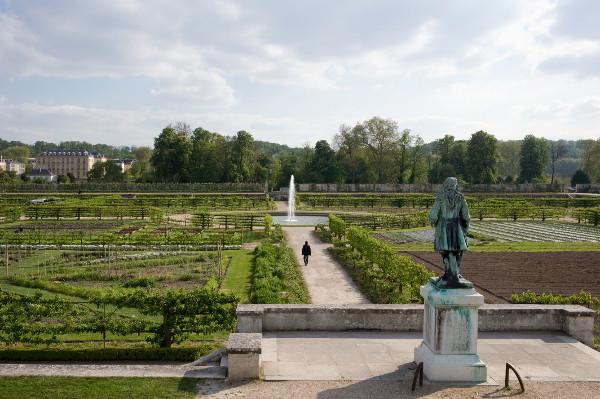 king s vegetable garden of versailles in france. Black Bedroom Furniture Sets. Home Design Ideas
