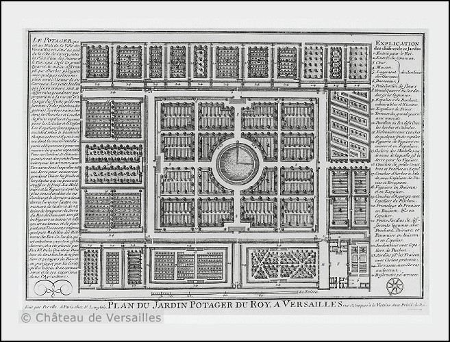Map of the King's vegetable garden